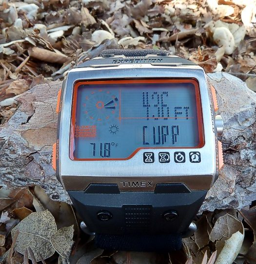 Timex Expedition WS4 Watch